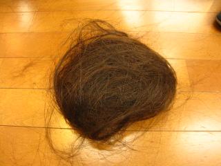 こちらが梳いた髪
